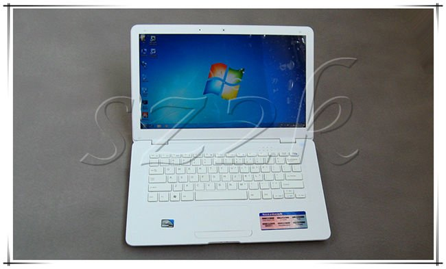 Hot Selling 14 Inch Mini Laptop with Intel Atom D425/D25001.80Ghz +2GB ROM+320GB HDD+HDMI+1.3M Camera+Flash 11.1 supported