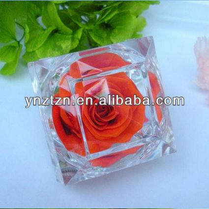 Natural Green Flower Natural Green Rose Flower