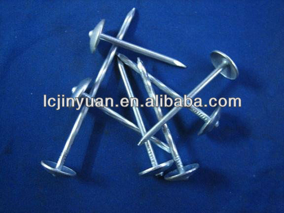 10BWG Galvanized umbrella steel roofing nails,steel nails for roofing