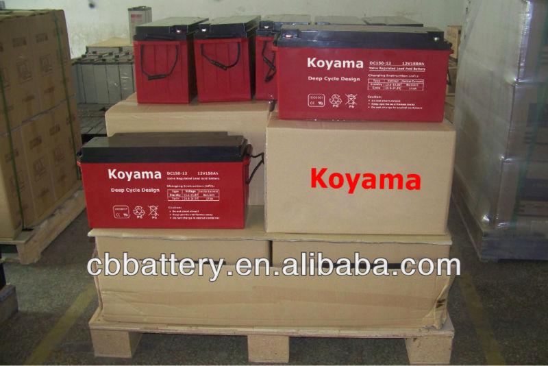 acutal batteries 1.jpg