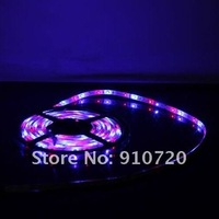 Free Shipping + 1PC 5M DD01-W/RGB SMD 3528 LED Strip Light 300 LEDs DC 12V 20W Waterproof RGB for Holiday + Controller