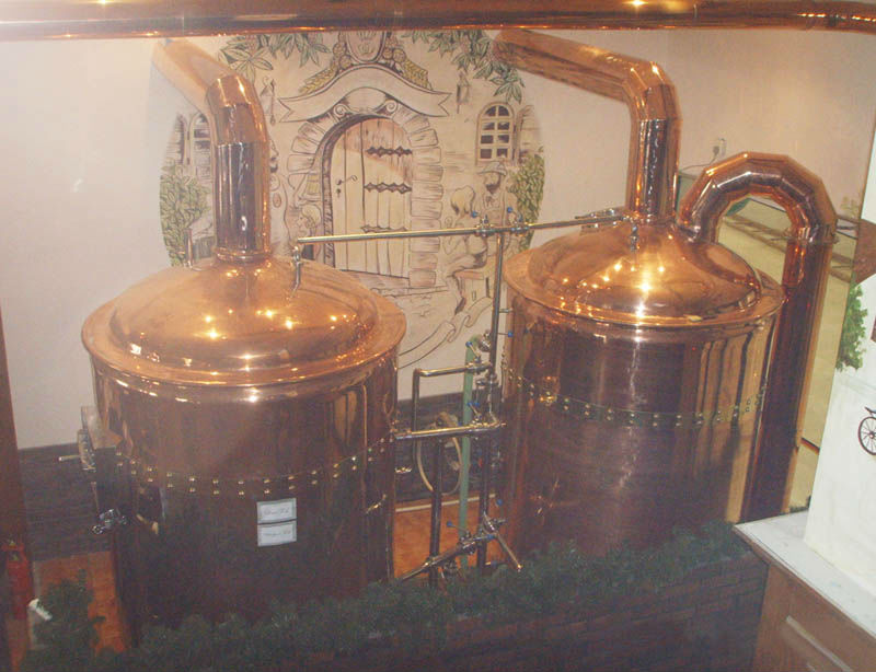 hotel/pub/restaurant beer brewhouse equipment