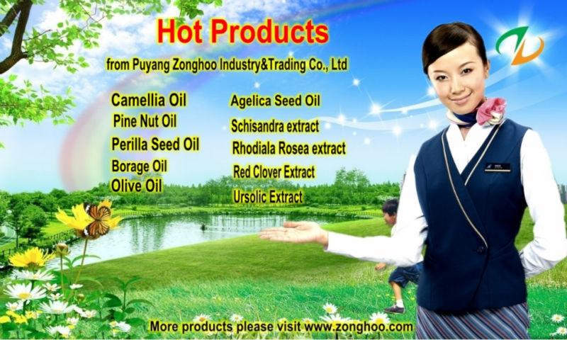 High Quality Dong Quai Oil