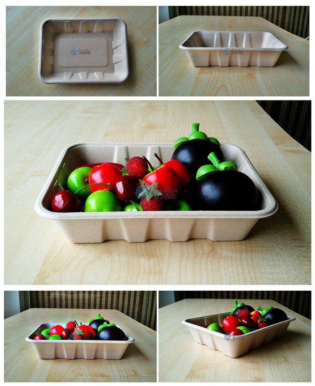 rectangular compostable bagasse supermarket tray
