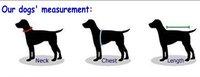 Одежда для собак Bigs! , /,