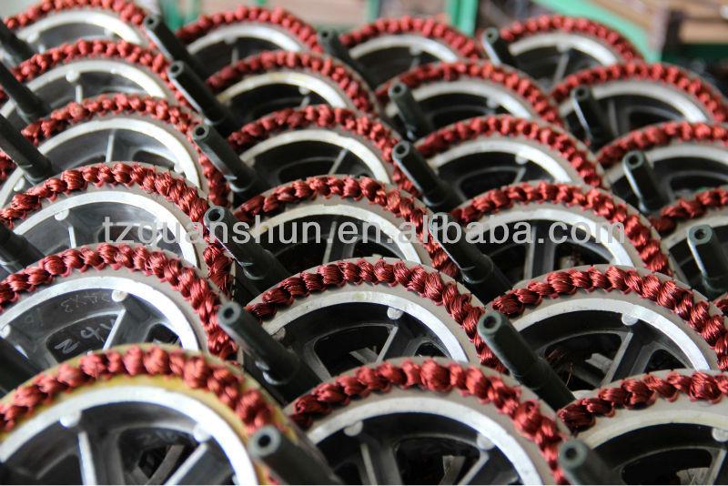 Electric Wheel Motor