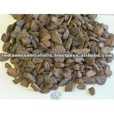Pine Bark Oil