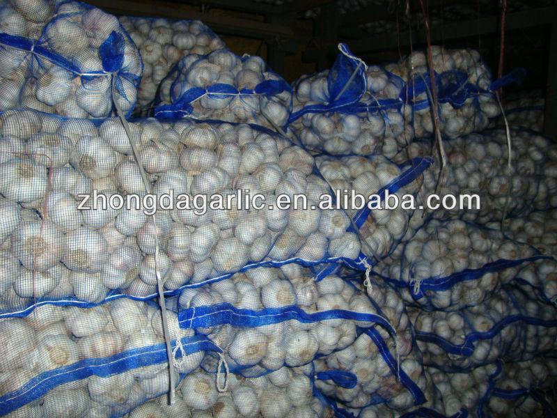 fresh natural garlic in 10kg /carton for sale