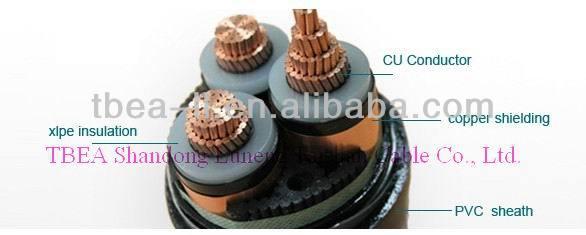 Carbon Fiber Composite Conductor
