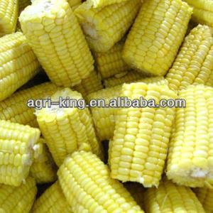 IQF & Frozen sweet kernel corn