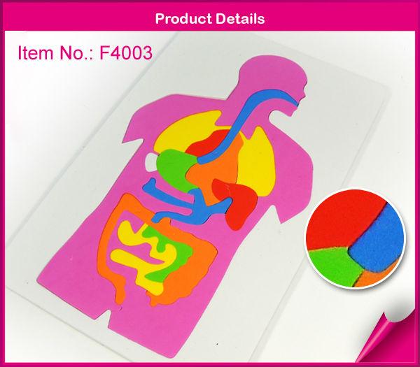 El sistema digestivo humano puzzles/rompecabezas-Puzle ...