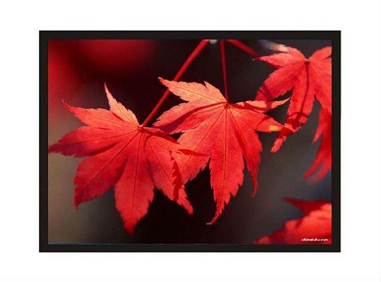 مسارح يتقنيات مختلفة المسارح المنزلية الجديدة شاشات مسرح منزلي اجهزة تلفزيون