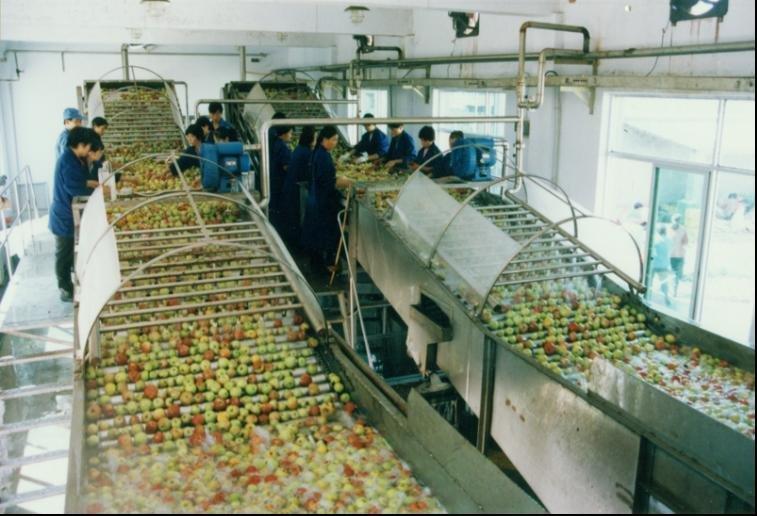 Apple Juice Maker Apple Juice Complete