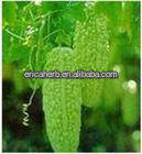 100% natural black cohosh extract 2.5%Triterpene glycosides