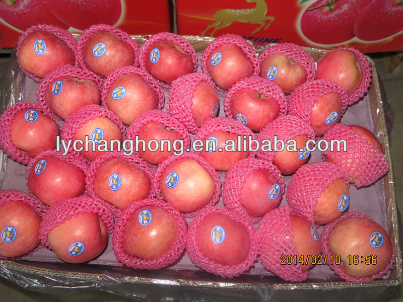 companies selling fruit apple