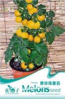 Карликовое дерево 90 3 Packs 90 of Yellow Small Cherry Tomato Seeds, Lycopersicon esculentum B039