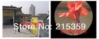 Монокуляры, Бинокли Sakura hd 30 x 60 30 x60