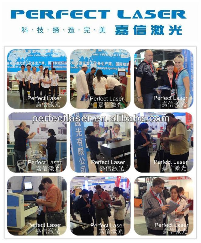 Perfect Laser Exhibition photo 1.jpg