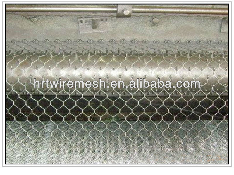 anping hexagonal mesh(chicken wire mesh)
