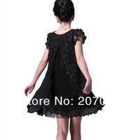 2013 women dress,ladies dress,pleated chiffon dress,strand empty embroidered design 3 colour