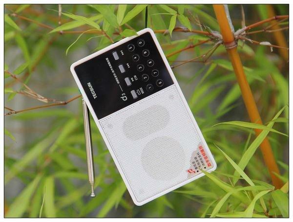 FM Speaker-7
