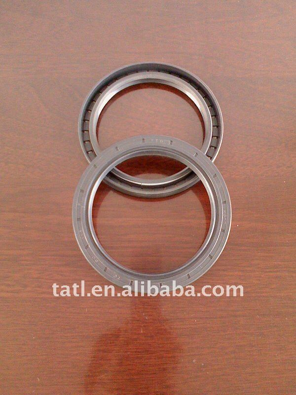 TC oil seal with double lips