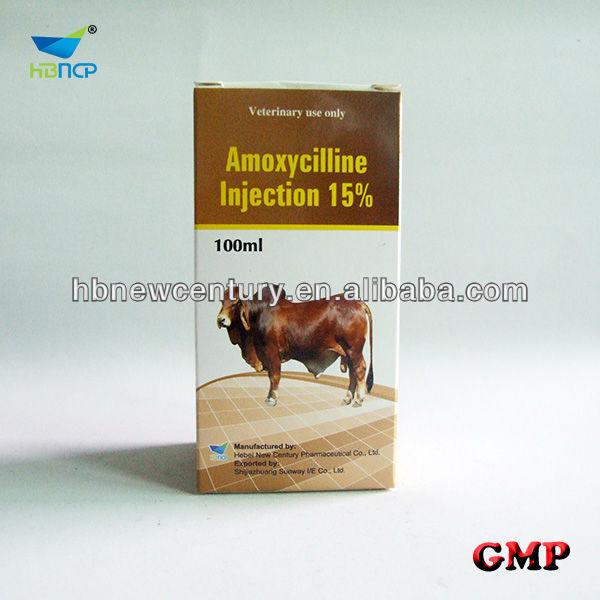 amoxycillin-5.jpg