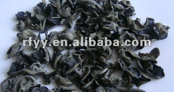dried black wood ear