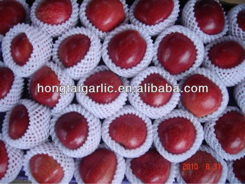 2013's high quality huaniu apples from hongtai