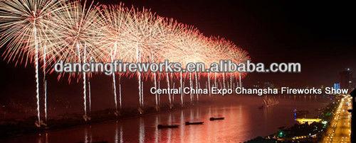 Central  China Expo__.jpg