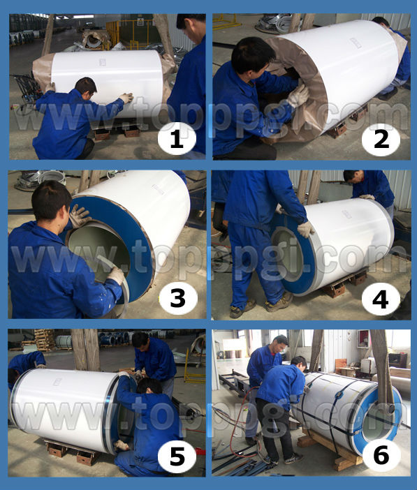 Top Brand SGCC Prepainted Galvanized Steel Coil DX51D For Microwave Oven