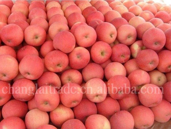 Wholesale delicious fresh fruit fuji apple