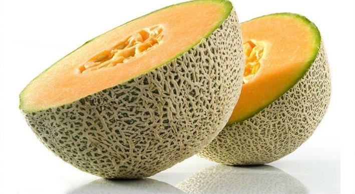 bulk fresh hami/fresh cantoloupe/fresh Hami melons