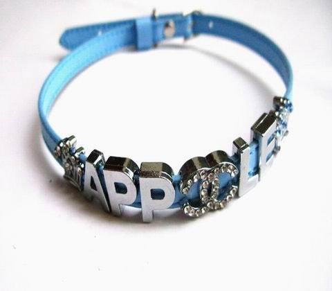 Pet collar 137