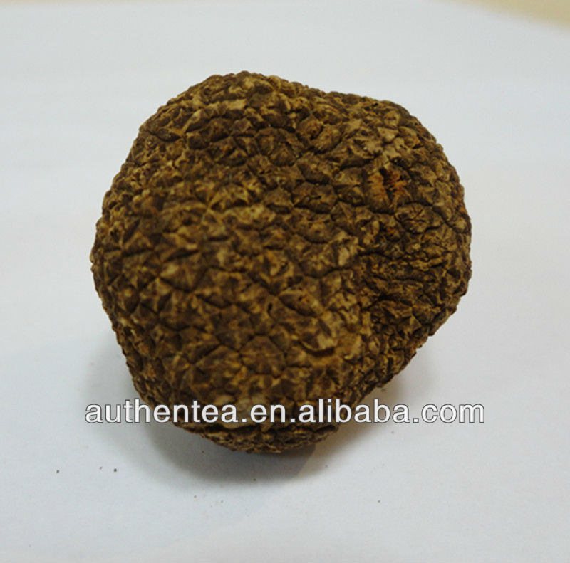 Authentea Extract Truffle Powder