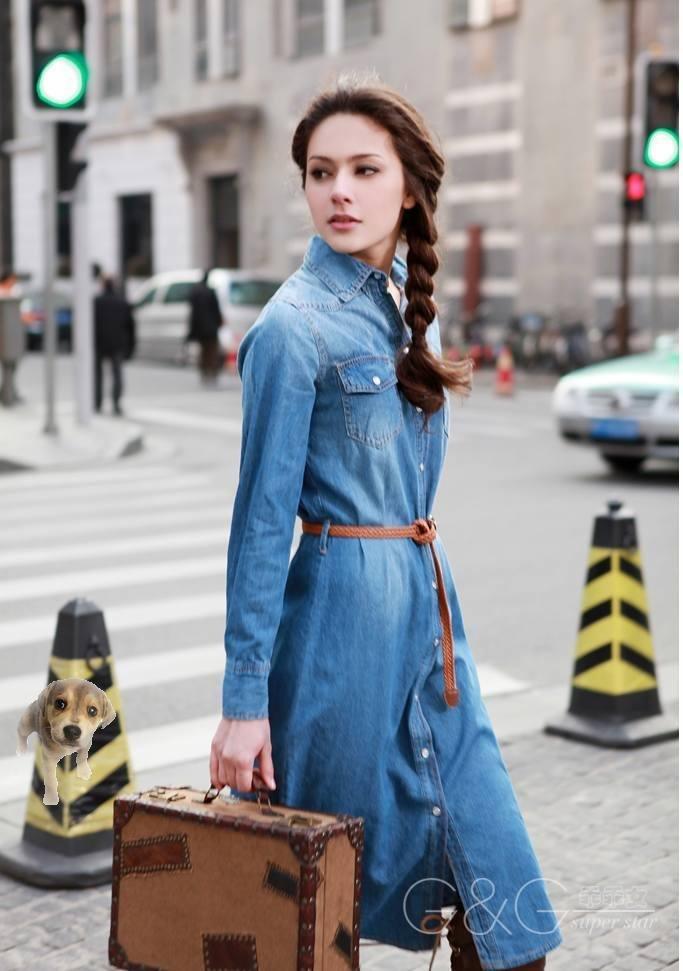 Chic Blue Dress 2012 Denim Dress Vintage Chic