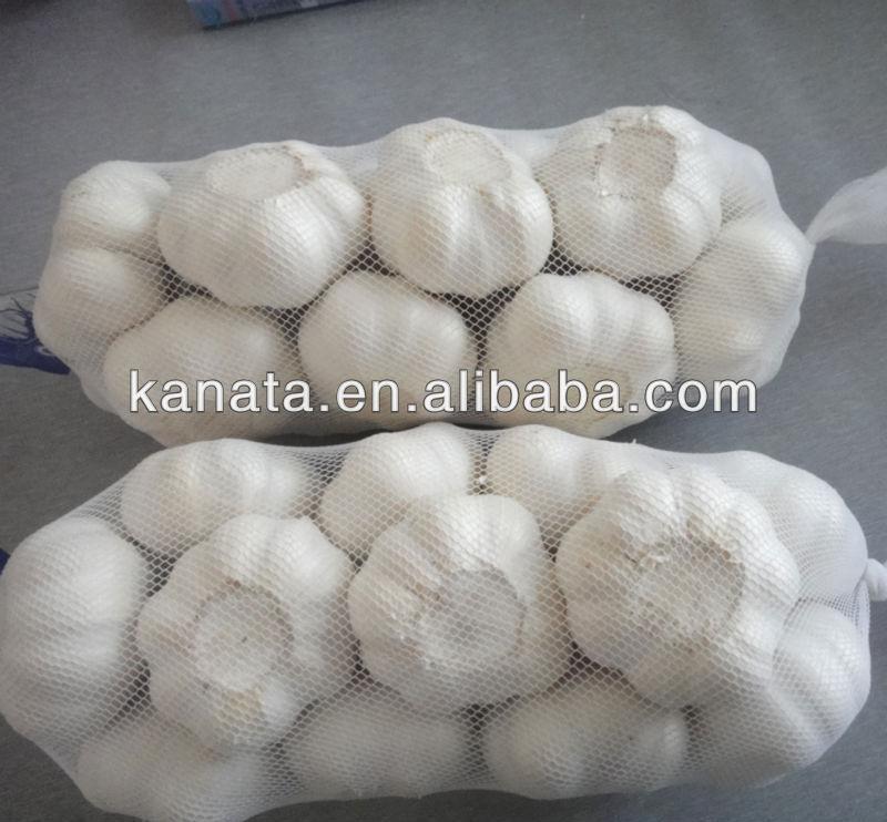 China wholesale fresh white garlic natural garlic fresh garlic price