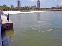 Рыболовная сеть Danshuisha 100 , fishing.mesh 0,8 . 5.0 , AS-100
