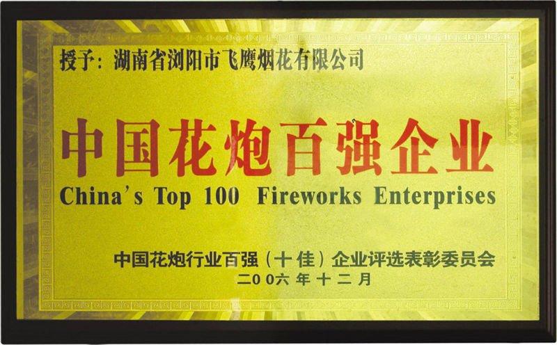 1.4G Consumer Fireworks Cake 100S stress buster