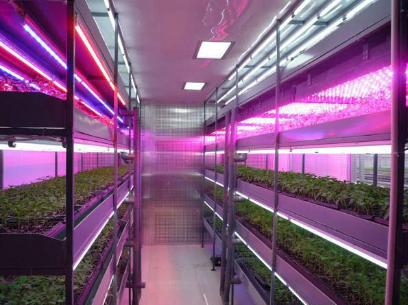 Подсветка из светодиодов для растений своими руками