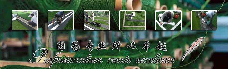 outdoor artificial football field grass