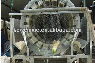 Industrial fruit wash machine