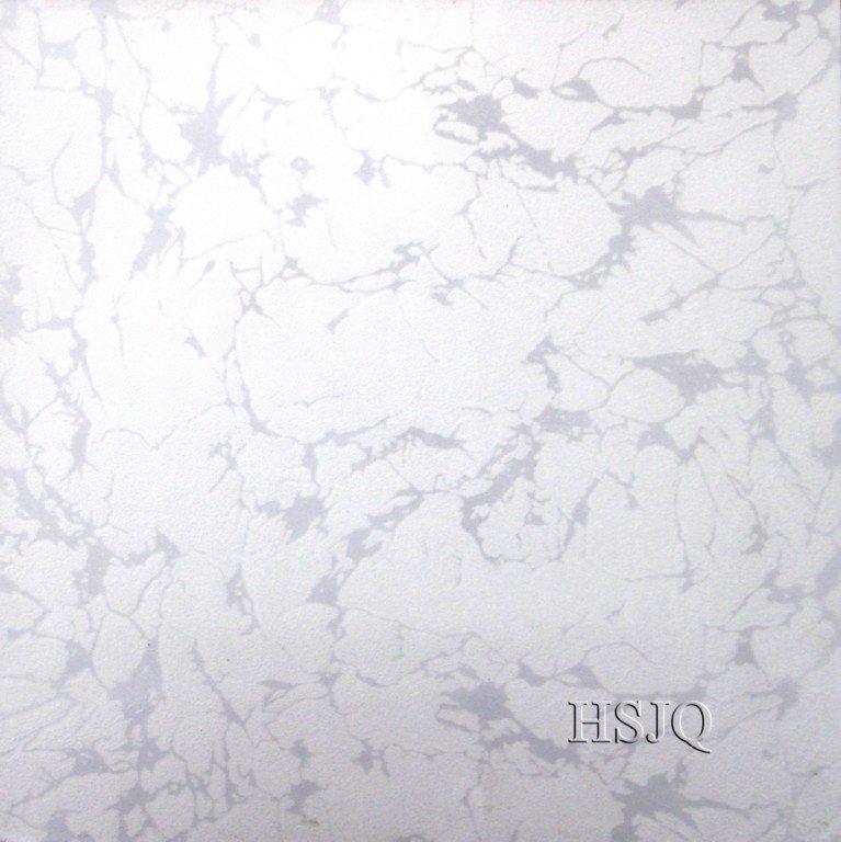 5016.jpg