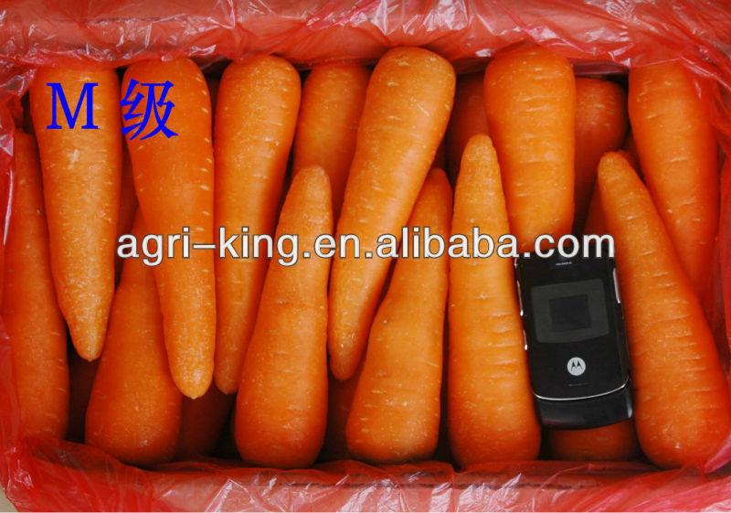 2014 China Fresh Carrot