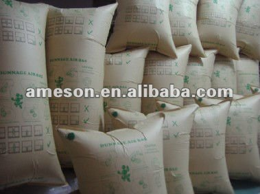Air dunnage bag for cargo protection