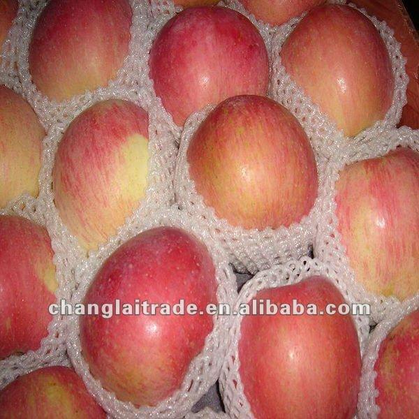 wholesale fuji apple fruit