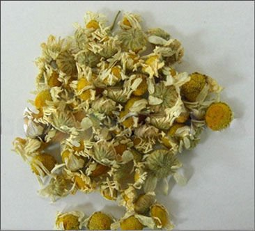 Chinese Dried Flos Chrysanthemi for Tea