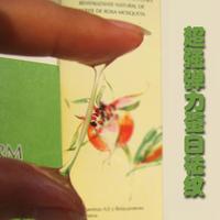 Комплект 5шт/УП + Анти морщин сыворотка лицо подъемник лоб лоб на патч патч морщин бесплатно лоб патч