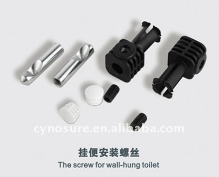 Wall Hung Toilet Installation Screws.jpg
