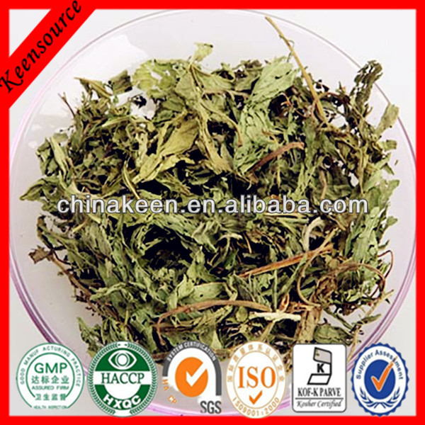 Best Quality Stevia Leaf Powder/Stevia Extract/ Steviol Glycosides 98%
